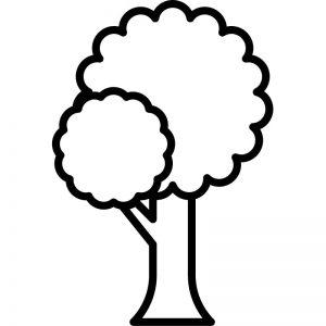 דף צביעה עץ 5
