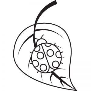 דף צביעה פרת משה רבינו על עלה